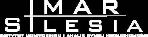 imars-logo-white-4120